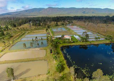 AquaVerde Redc;aw Farm