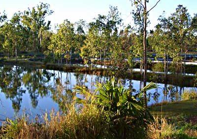 Redclaw ponds