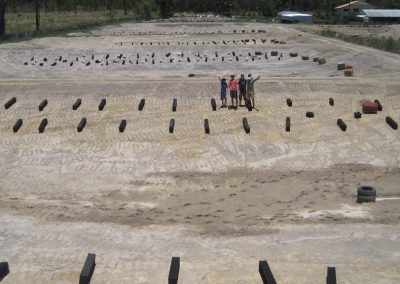 5 new ponds!